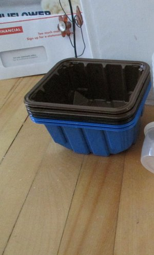 Photo of free plastic containers (Old Ottawa South)